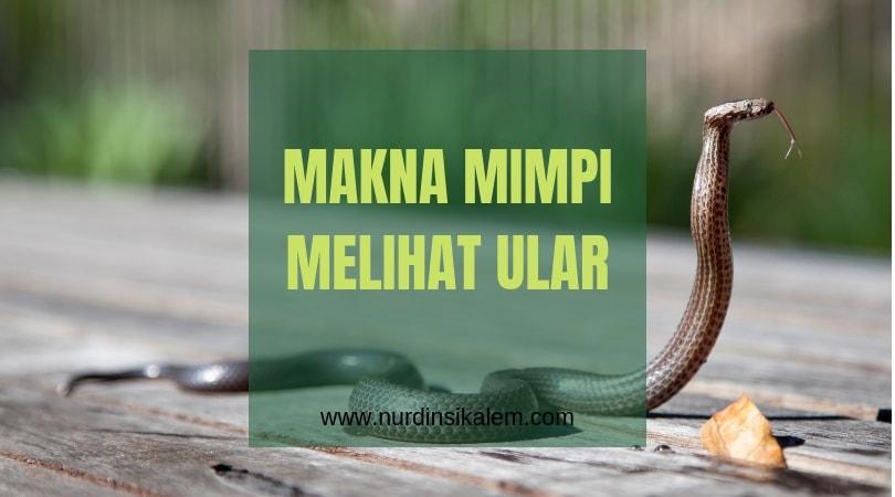 makna bermimpi ular
