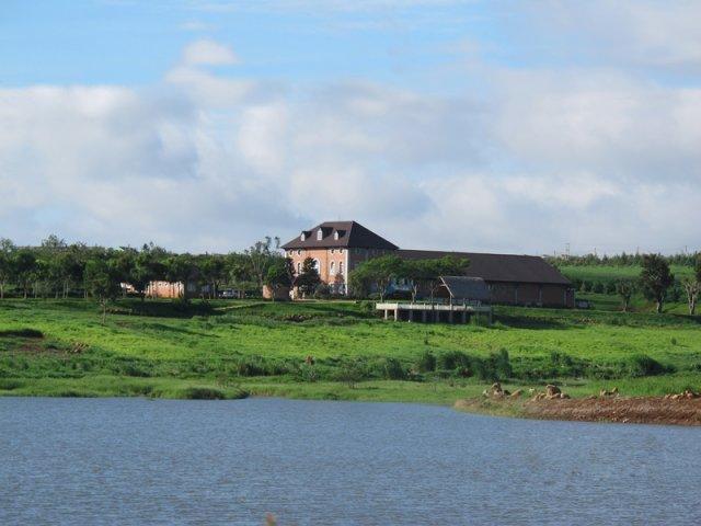 Hình ảnh Nông trại Dalat Milk nhìn từ phía hồ