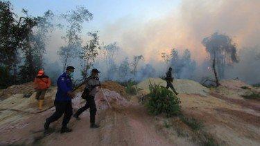 Kebakaran Hutan dan Lahan Melanda, Riau Tetapkan Status Siaga