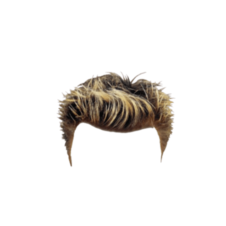 Men Hair Png