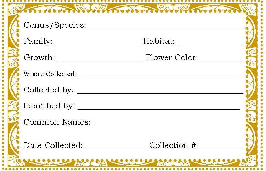 old garden solutions  herbarium label