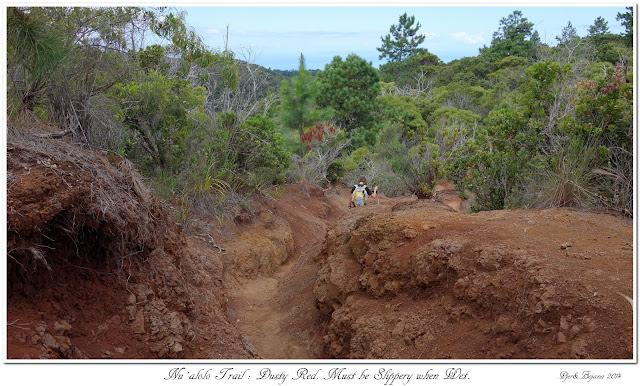 Nu'alolo Trail: Dusty Red. Must be Slippery when Wet.