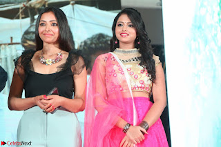 Geethanjali and Swetha Basu at Mixture Potlam Movie Audio Launch Feb 2017 003.JPG