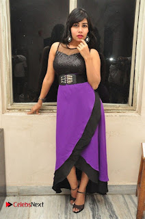 Telugu Actress Rachana Smith Stills at Money is Honey Audio Release  0079.jpg
