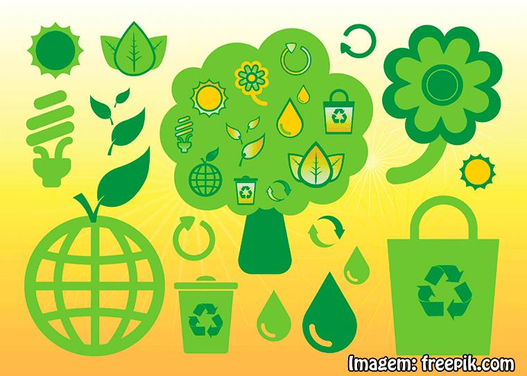 Qual a diferença entre Engenharia Ambiental e Engenharia Florestal?