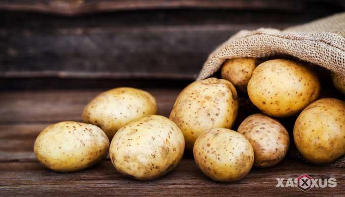 Cara menghilangkan sakit kepala dengan kentang