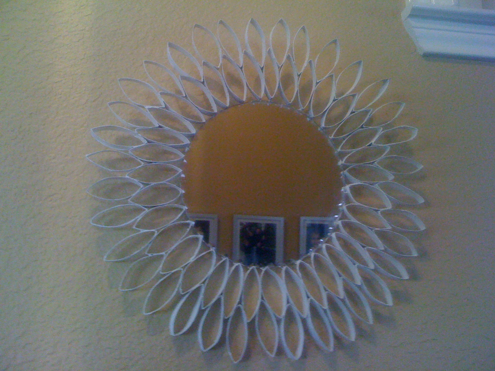 Toilette Paper Tube Mirror