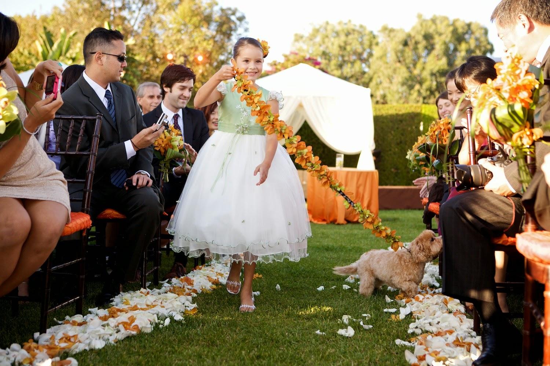 Ideias para incluir o seu cachorro no casamento