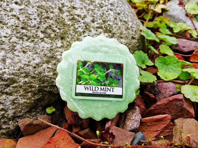 Wild Mint - Yankee Candle