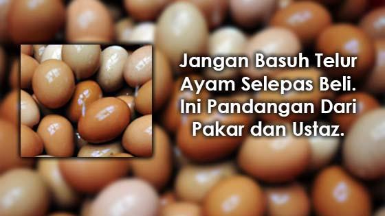 Penjelasan Kenapa Tidak Boleh Basuh Telur Ayam Selepas Beli