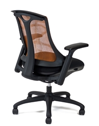 Layover Chair - Rear View