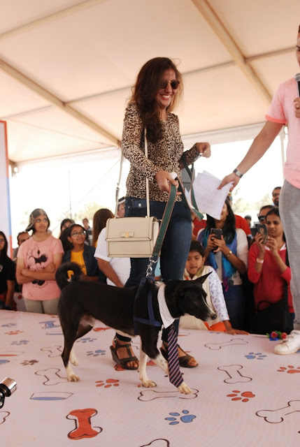 Pets Extravaganza at Happy Dog Carnival 2017