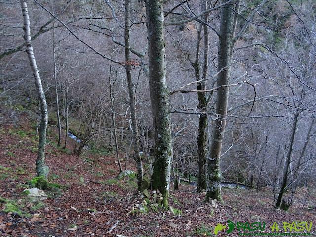 Ruta Gumial: Bosque y canalización del Río Gumial
