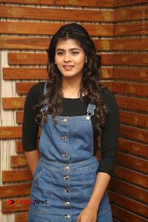 Actress Hebah Patel Stills at Nanna Nenu Naa Boyfriends Movie Interview  0002.JPG