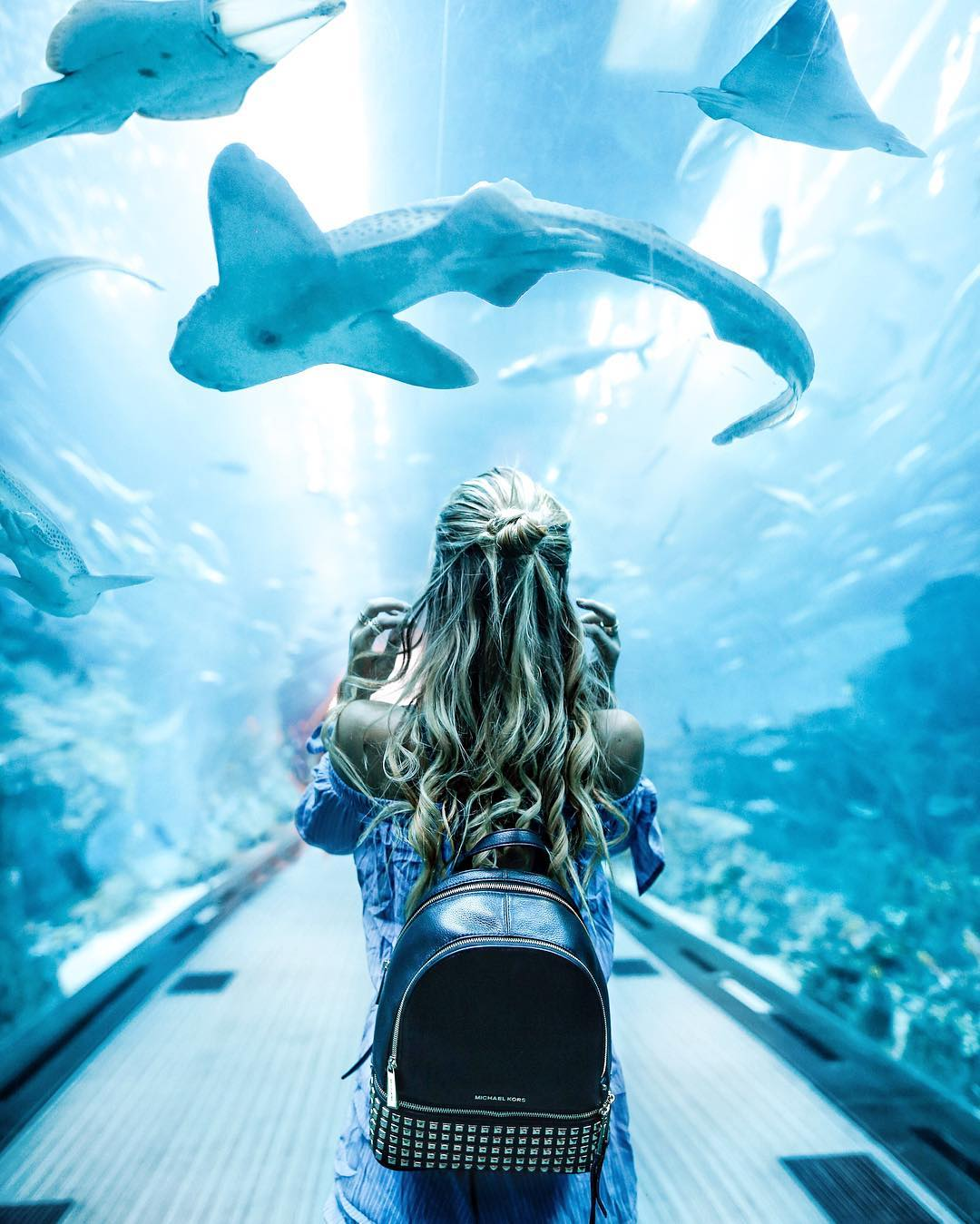 Casual rendezvous with sharks at the Dubai Mall