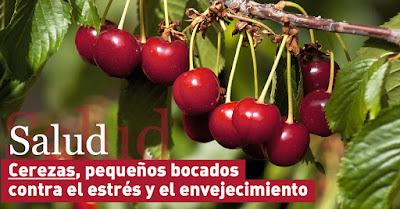 SALUD: Cerezas, pequeños bocados contra el estrés y el envejecimiento