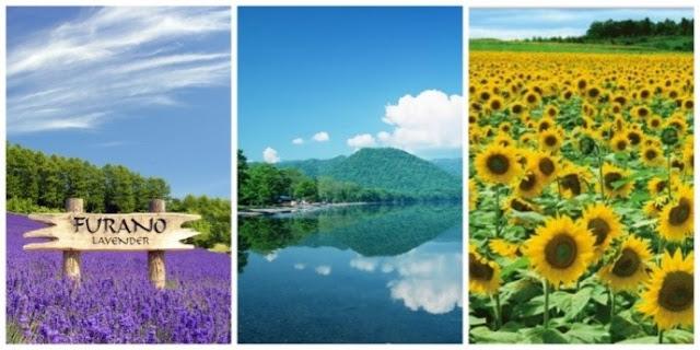 Hokkaido - Summer Travel Guide