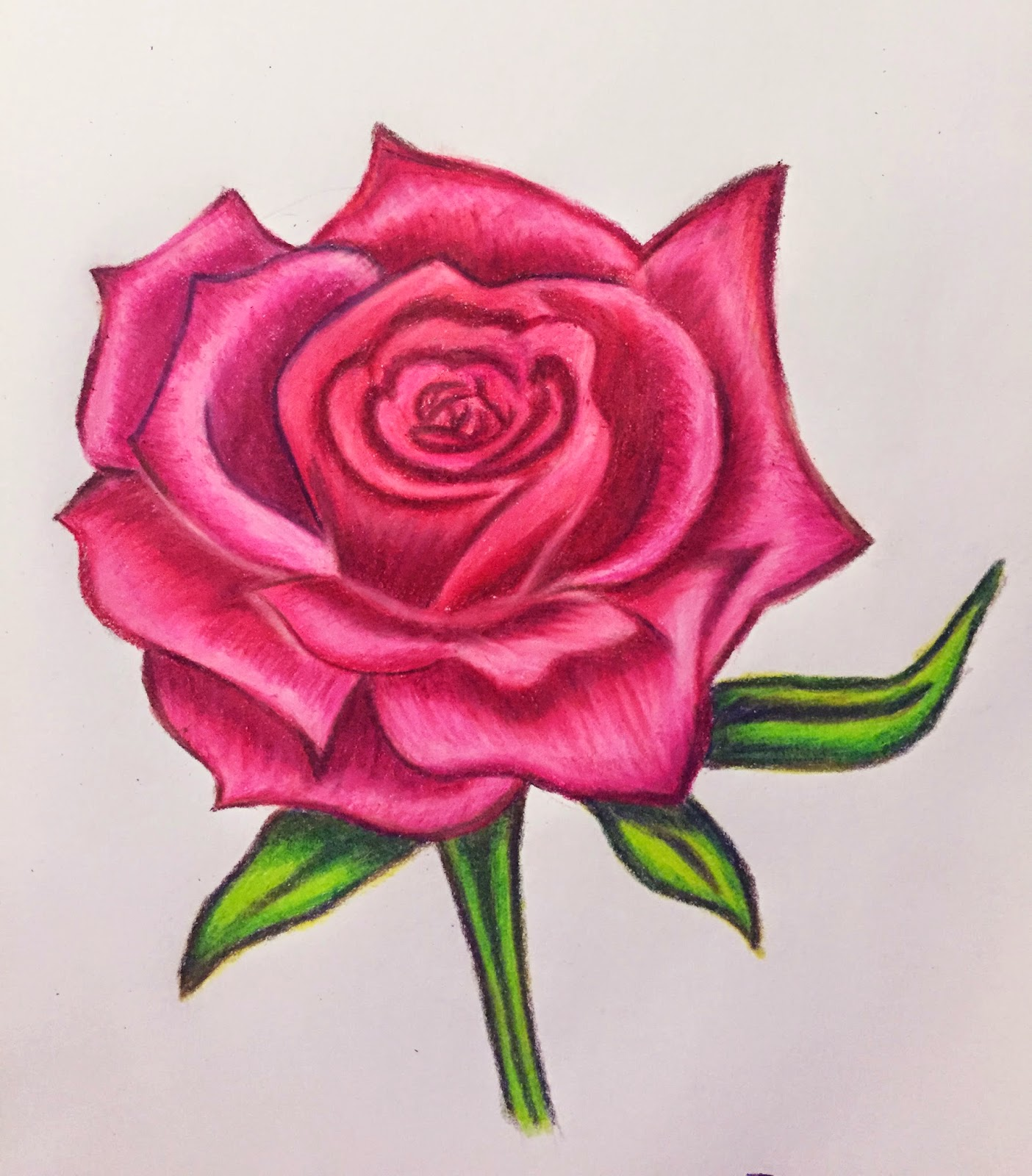 It's just a graphic of Effortless Rose Drawing Color