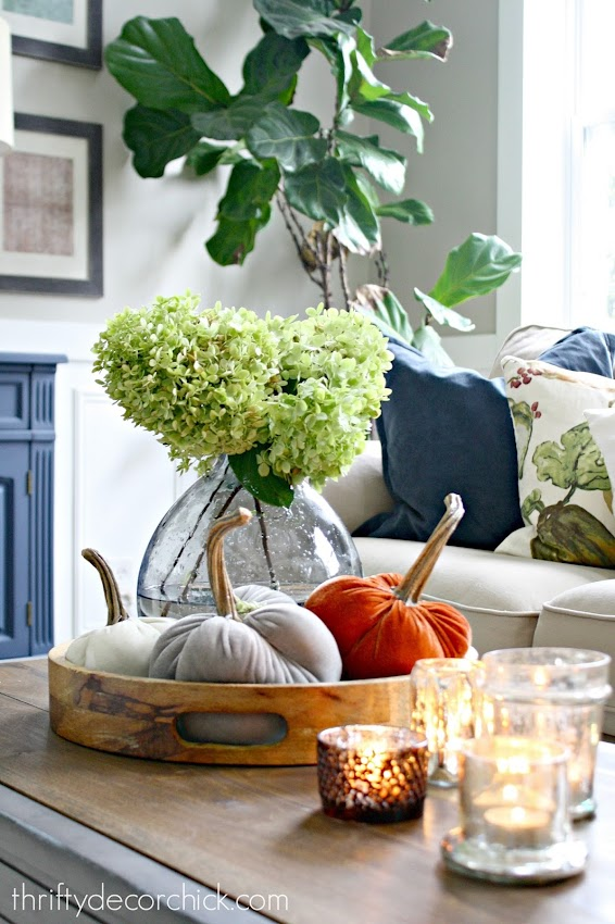 fall velvet pumpkins for decorating