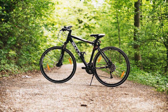 Znalezione obrazy dla zapytania chojna24 rower