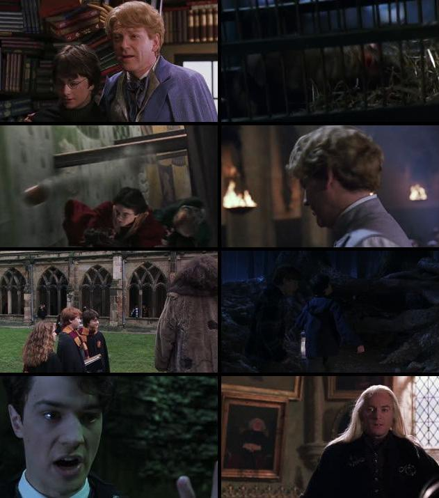 Harry Potter And The Chamber Of Secrets 2002 Dual Audio Hindi 480p BluRay