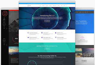 Divi - Responsive WordPress Theme