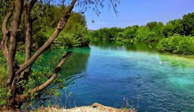 Danau Tasikardi