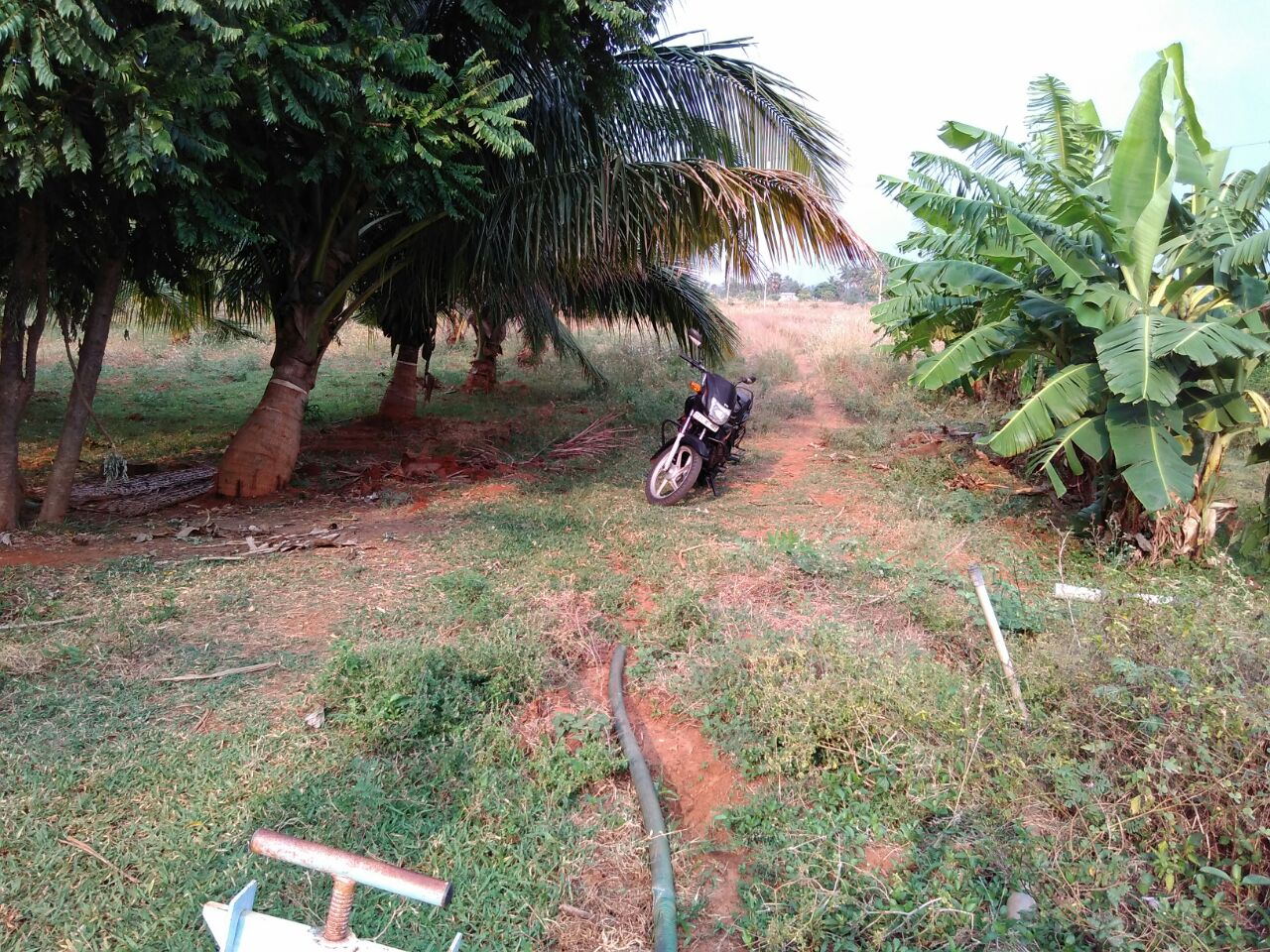 farms for sale cheap land for sale land for sale by owner