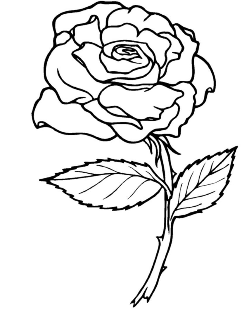Los dibujos para colorear dibujos de rosas para colorear ramos jarrones corazones - Rose coloriage ...
