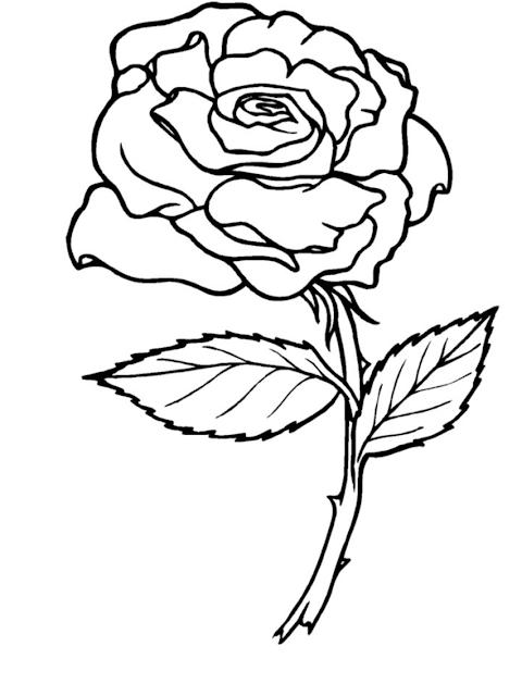 rosa para colorear
