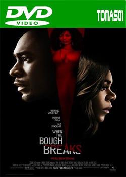 Cuando se rompe la rama (2016) DVDRip