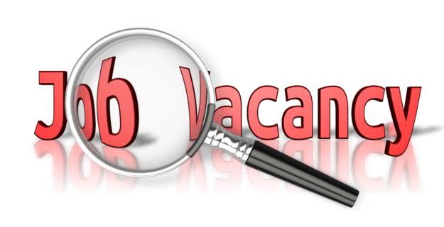 JOB VACANCY: Fresh Vacancies at Transsion Holdings/ Graduate Finance Interns at Henkel