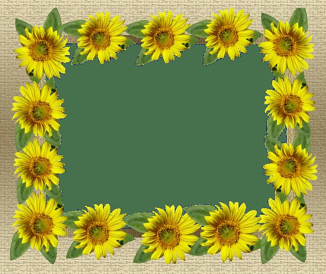 اطارات ورد دوار الشمس اصفر
