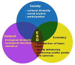 edp315 society and environment