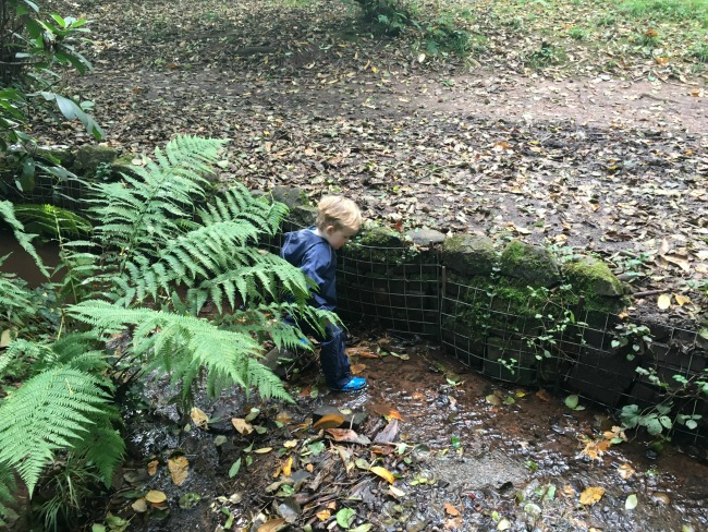 New-adventures-old-places-toddler-in-stream