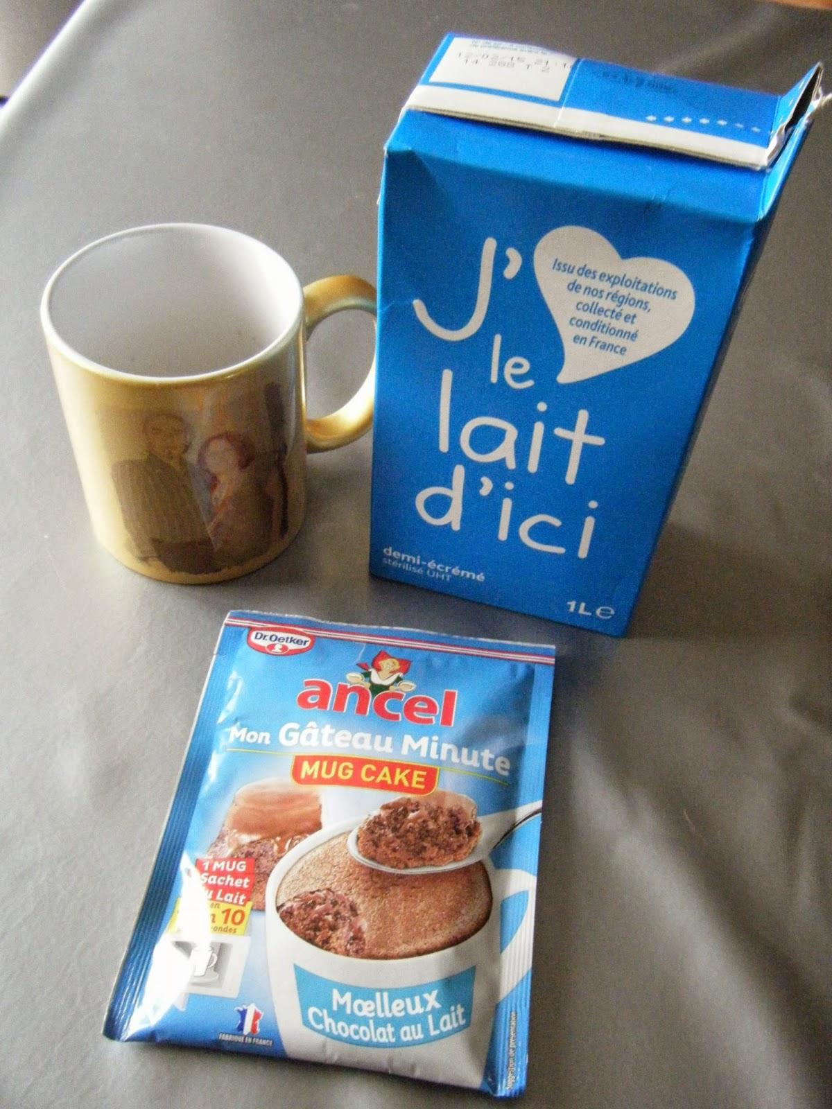 Mug Cake Chocolat Ancel