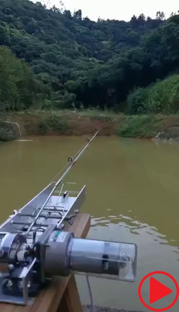 Auto fishing