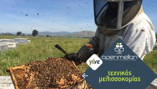 Σπουδές μελισσοκομίας σε επίπεδο ΙΕΚ: Προσφορά για τους αναγνώστες του Melissocosmos