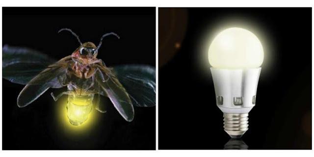 Lampu LED Efisien