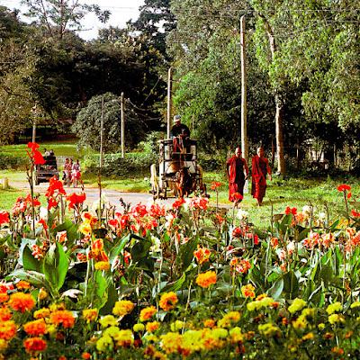 Pin Oo Lwin Buddhist monks