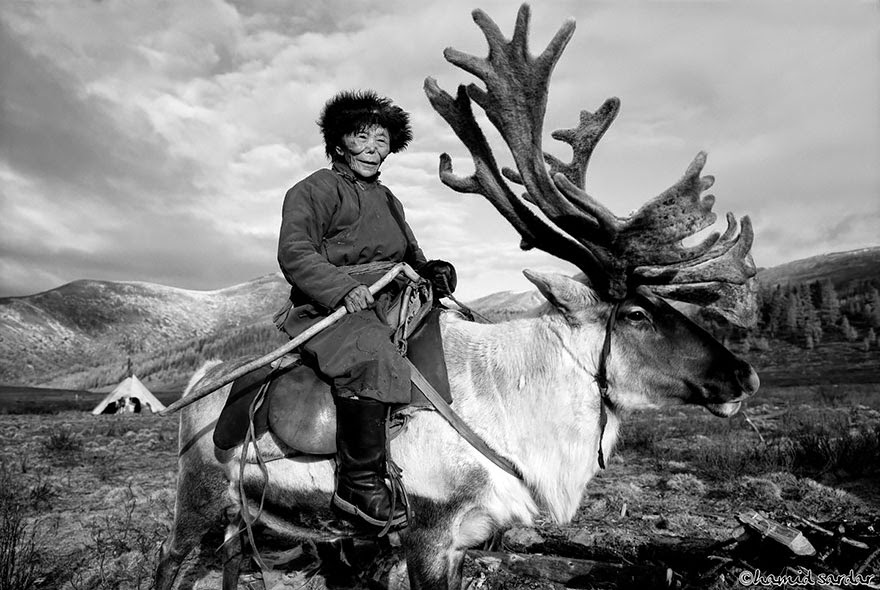 reindeer people Dukha people Hamid Sardar-Afkhami-8