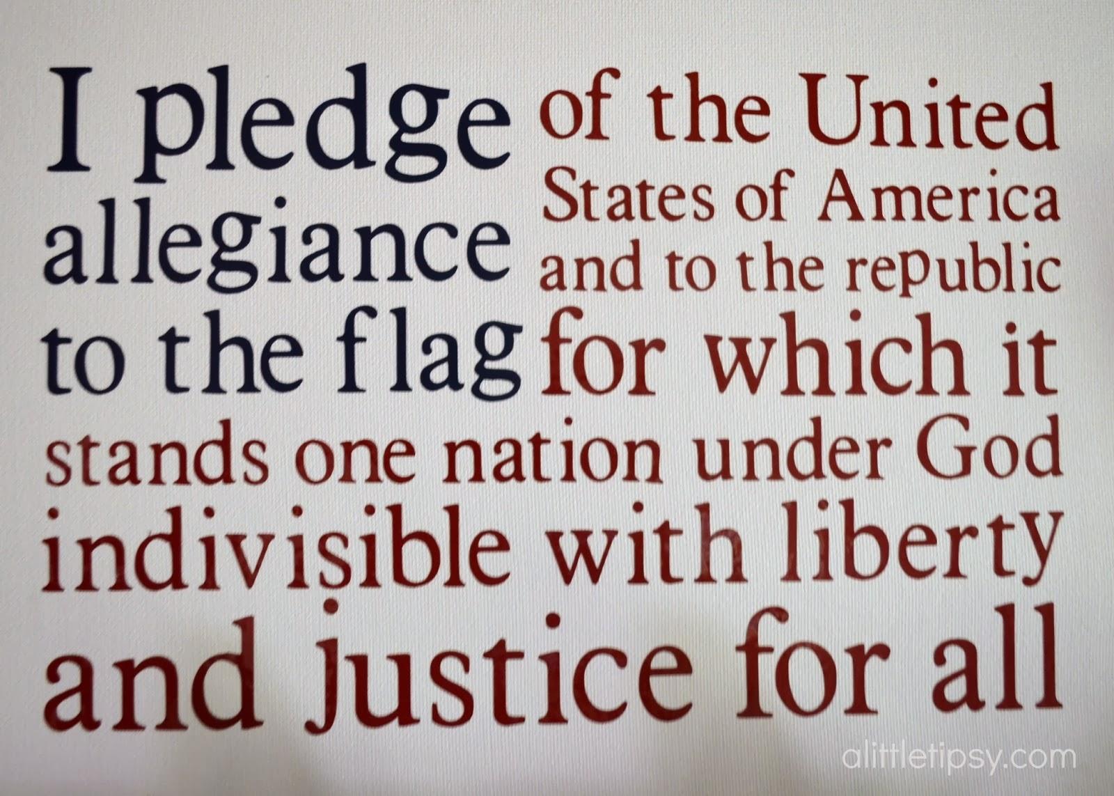 American Citizenship A Long Term Commitment