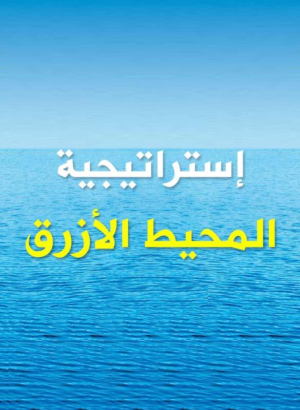 كتاب استراتيجية المحيط الازرق عربي