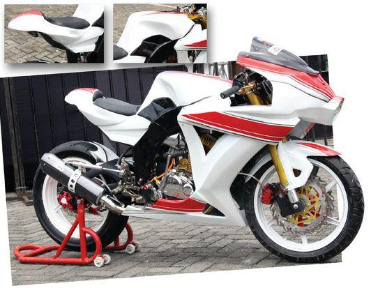 Modif Motor: Modif Honda Tiger 2004 Duck Tail