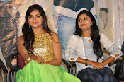 Ameerpetlo audio success meet photos-thumbnail-8