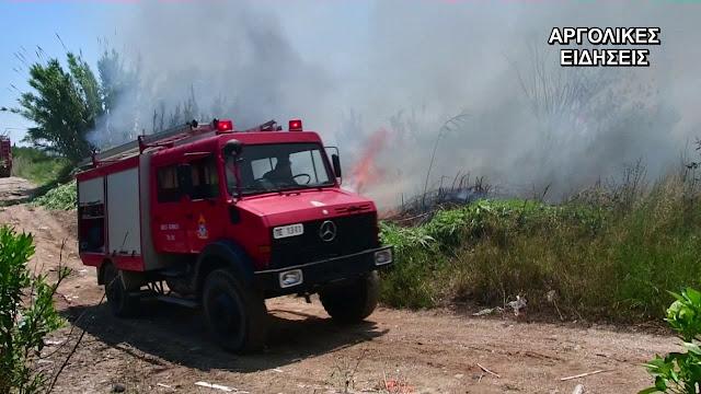 Αργολίδα: Επίθεση Ρομά σε πυροσβέστες στη Νέα Κίο
