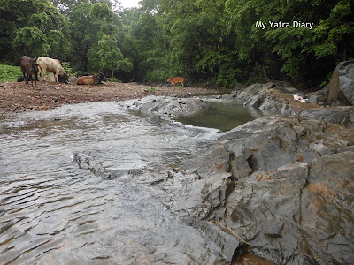 A stream at Tungareshwar temple in Vasai, Mumbai