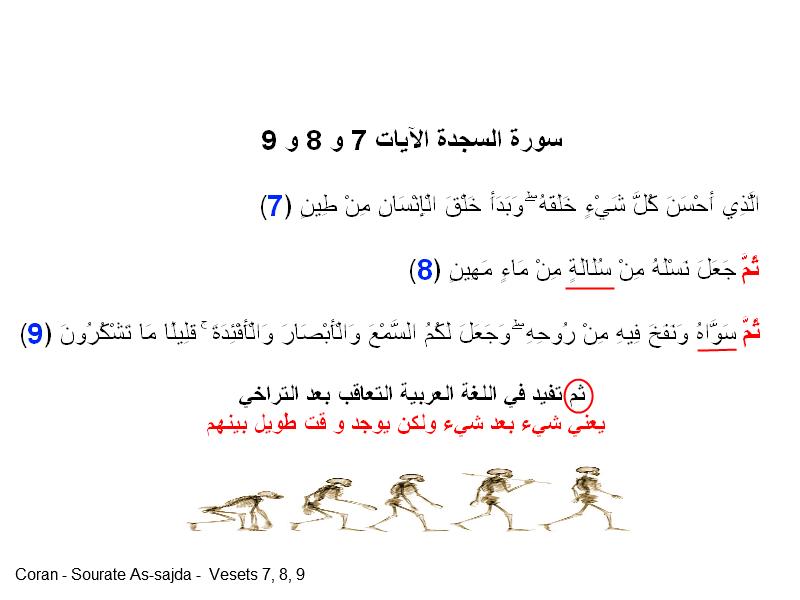 تطور دارون داروينية darwin evolution islam اسلام نضرية