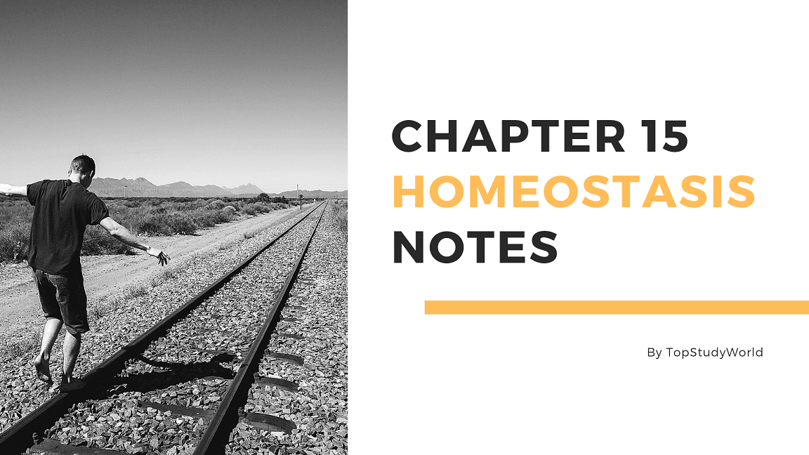 Chapter 15 - Homeostasis Notes in PDF [12th Class] | Top