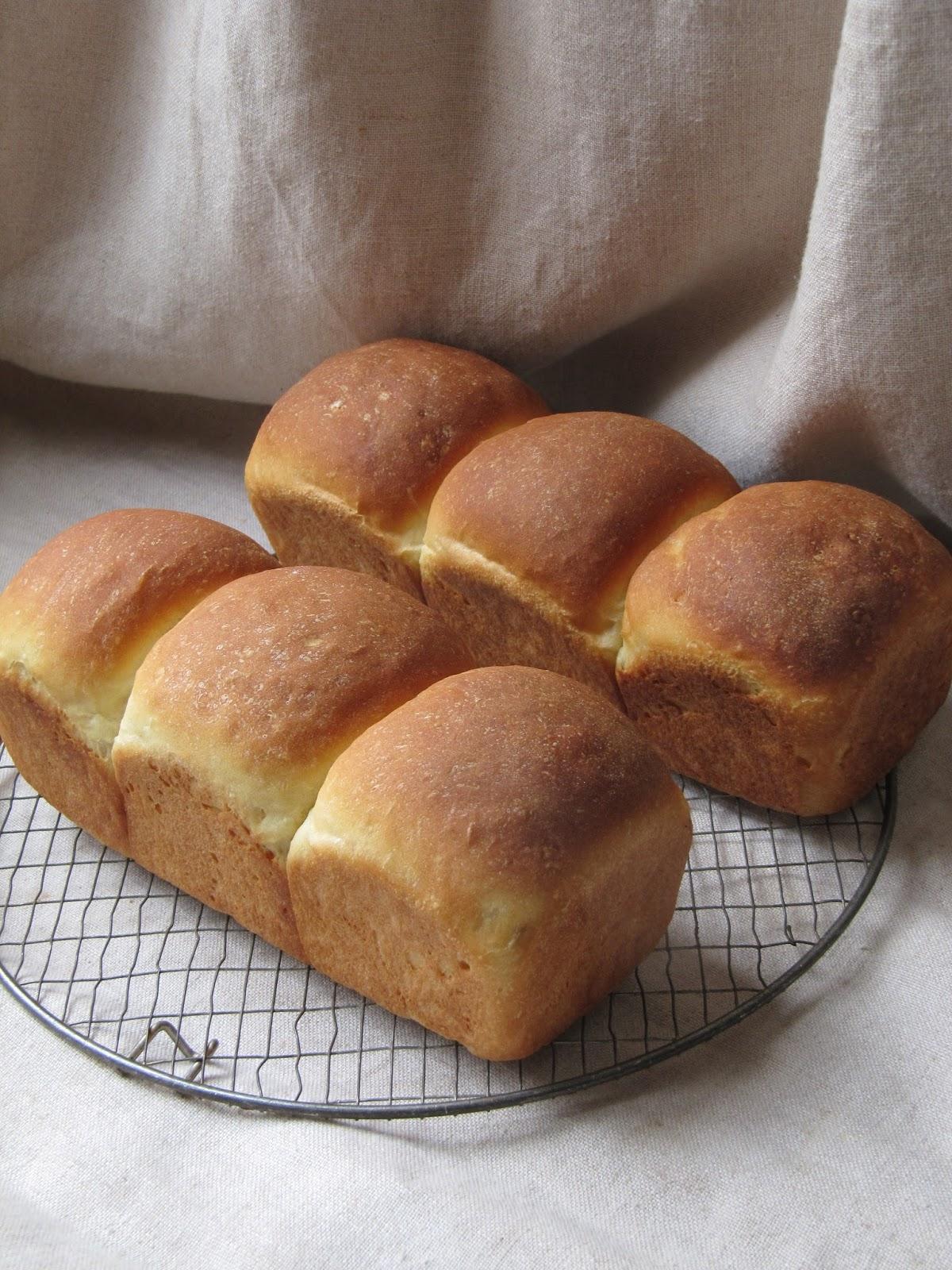 La cuisine d 39 ici et d 39 isca croque monsieur gratin for Congeler du pain de mie